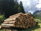 cataste-legno-dolomiti