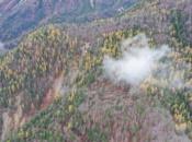 tempesta-vaia-foreste-abbattute